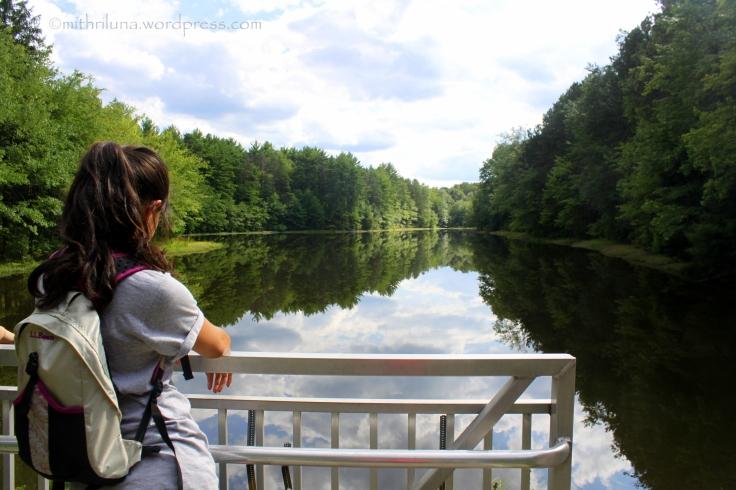 Pickerel pond2
