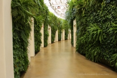 "Award winning bathrooms along the ""green wall"""