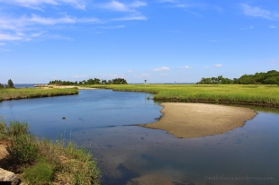 Sandy Hook salt marsh