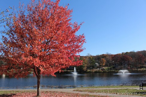 Watchung Lake, Watchung, NJ