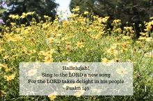 hallelujahsing-to-the-lord-a-new-songfor-the-lord-takes-delight-in-his-people