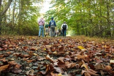 Nature walk - Great Swamp National Wildlife Refuge, NJ