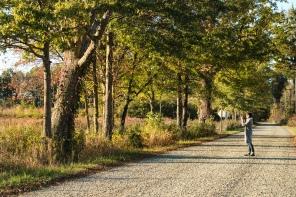 Great Swamp National Wildlife Refuge, NJ
