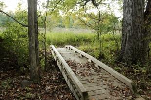 White Oak trail, Great Swamp National Wildlife Refuge, NJ