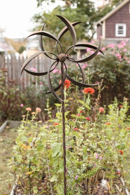 My garden and last zinnias